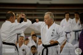 Greece 2014 – Yamada Cup – Seminars
